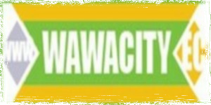 wawacity-ddl-streaming
